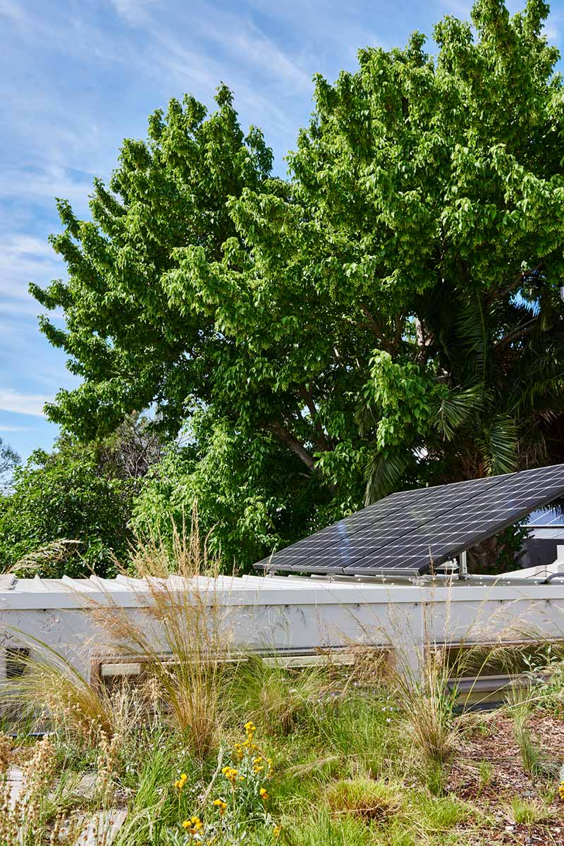 sustainable cottage green roof - Melbourne Vernacular