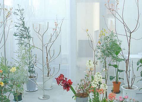 tiny-japanese-house-garden-8