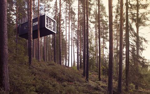 tree-hotel-cabin-4