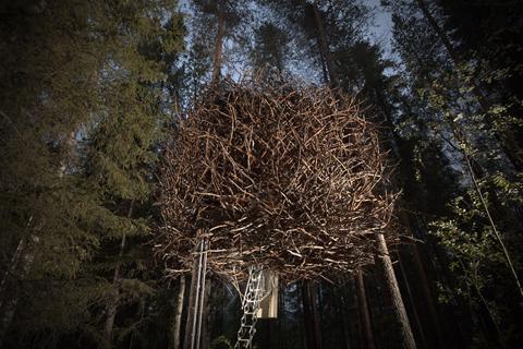 tree-hotel-nest