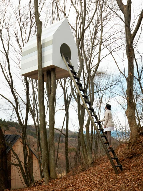 tree-house-bird-watcher-06