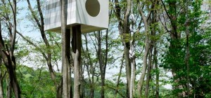 tree-house-bird-watcher-102