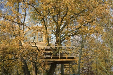 treehouse-design-baumraum-8