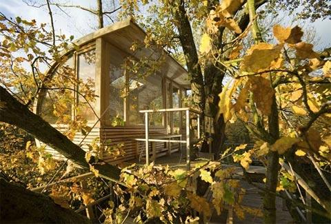 treehouse-design-baumraum