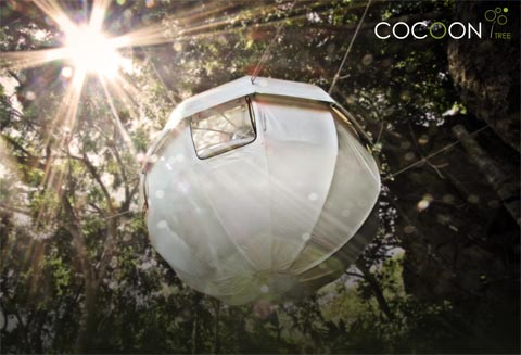 treehouse-design-cocoon