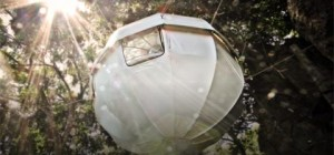 treehouse design cocoon2 300x140 - Cocoon tree: nesting in a... tree