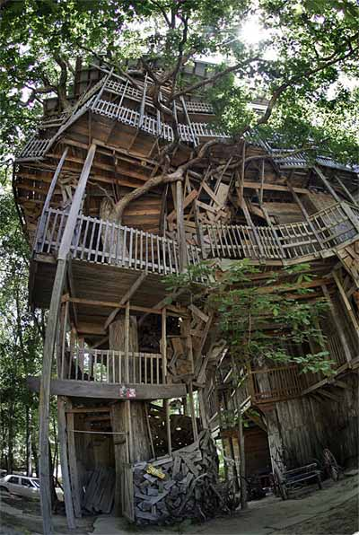 treehouse design god - God's Treehouse