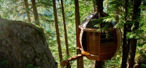 treehouse design hemloft 032 300x140 - The HemLoft: an egg-shaped treehouse