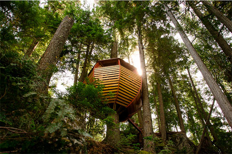 treehouse-design-hemloft-05
