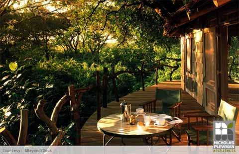treehouse-design-manyara
