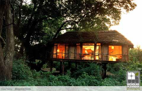 treehouse-design-manyara1