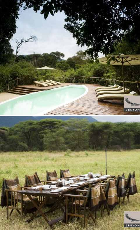 treehouse design manyara6 - African Treehouse: Lake Manyara Tree Lodge