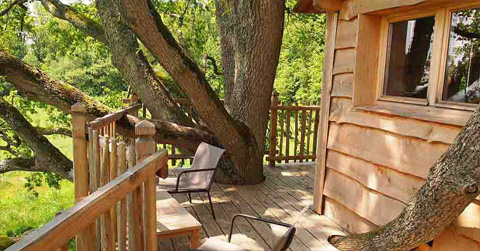 treehouse-design-perche1