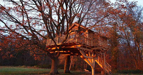 treehouse-design-perche2