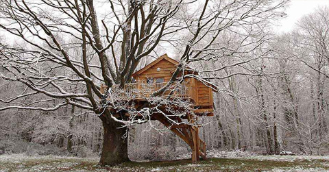 treehouse-design-perche5