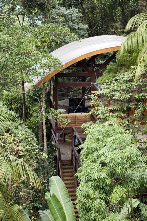 treehouse-design-praia