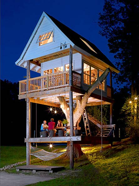 Treehouse Design Tom 5