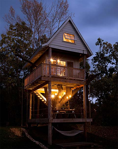 treehouse-design-tom