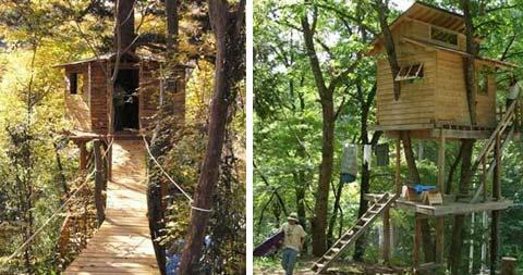 treehouse-design-people