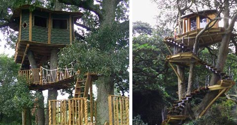 treehouse-design-people