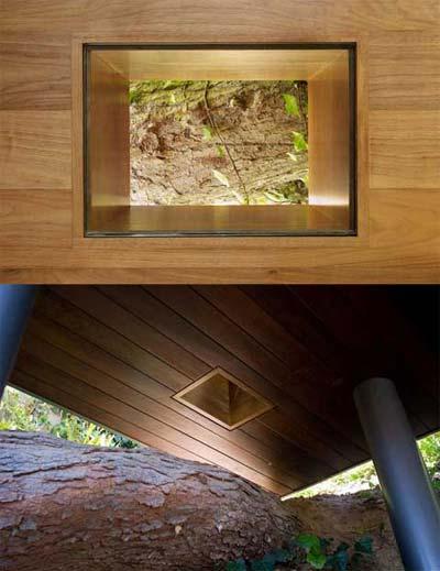 treehouse studio banyan5 - Banyan Drive Treehouse Studio