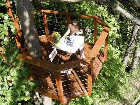 Sophie 39 s terrace up in the trees treehouse design for Terrace trees