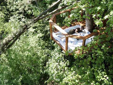 treehouse-terrace-sophie2