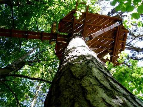 treehouse-terrace-sophie4