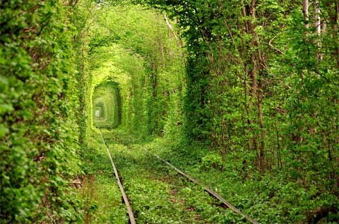 tunnel-of-love-ukraine-2